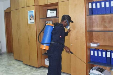 Pest control services in kenya