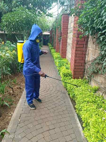 Solcity Fumigation & Pest Control Services in nairobi