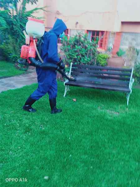 Fumigation services in nairobi